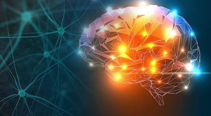 Apply Science - brain Innovations